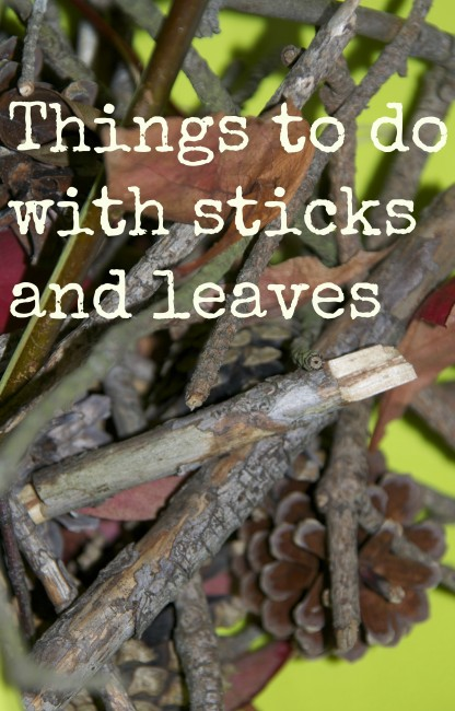 Things To Do With Sticks And Leaves