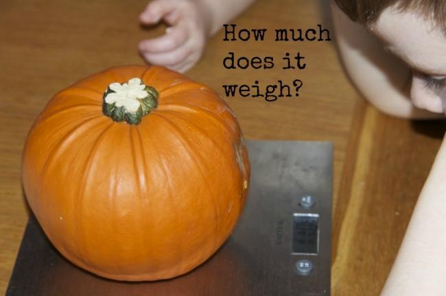 pumpkin1-1024x682