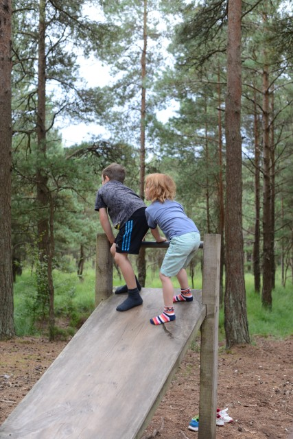 fitness trail - moors valley
