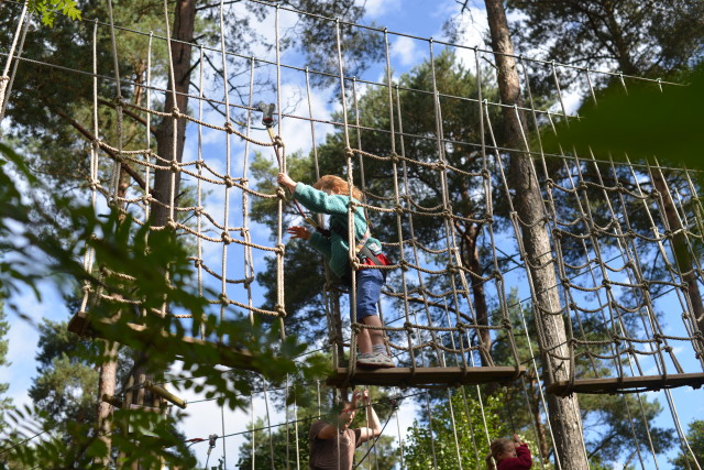GoApe Junior