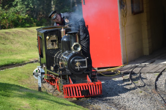 Steam engines at Moors Valley
