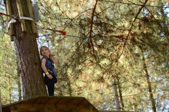 Go Ape at Moors Valley