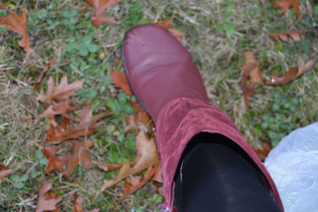 Hotter Shoes - Mystery Boots