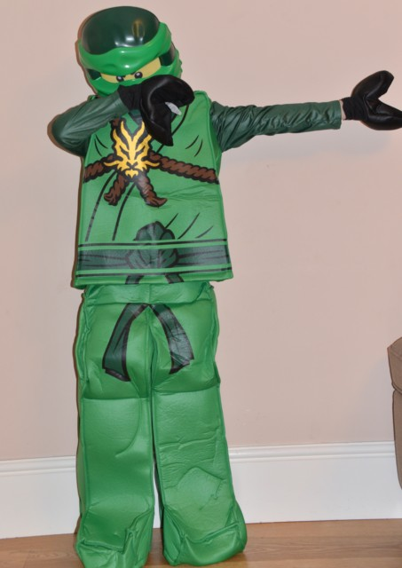 Ninjago fancy dress & LEGO Ninjago Fancy Dress Costume