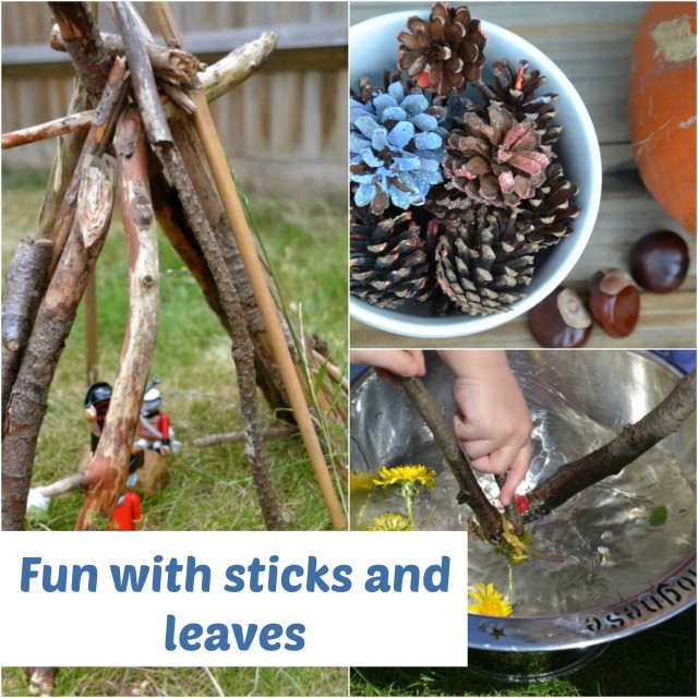 sticks and leaves