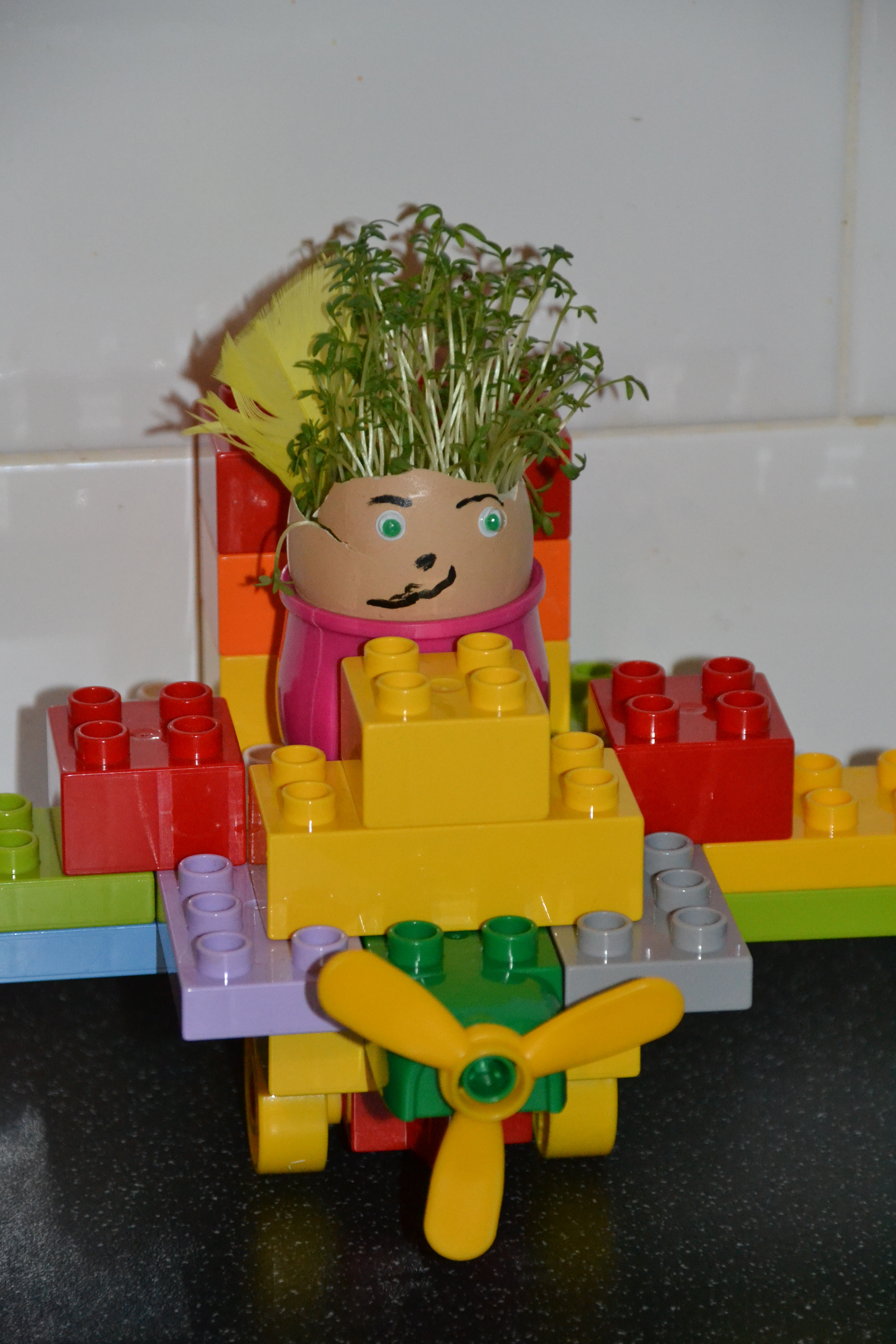 Cress in an egg and some DUPLO