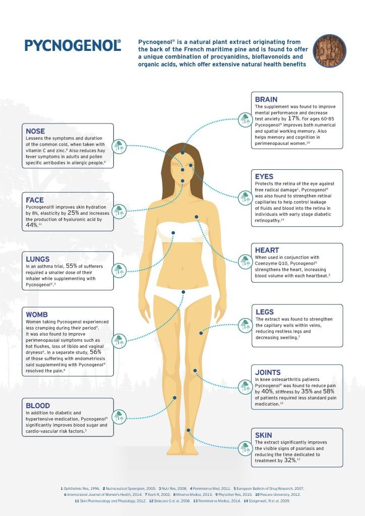 Pycnogenol infographic FINAL