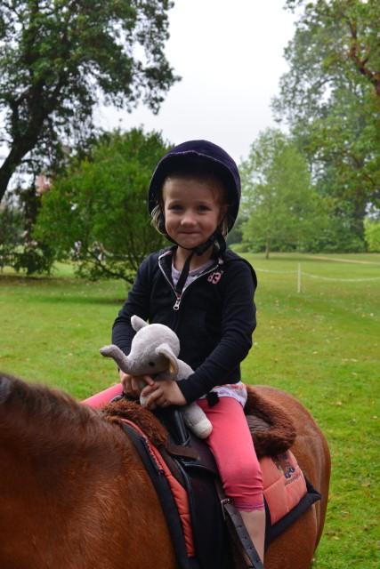 Pony rides Hatchlands Park