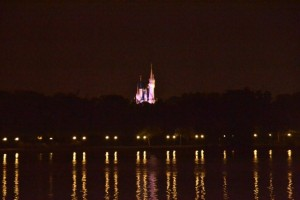 Disney Castle from the Grand Floridian