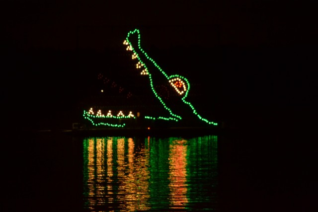 Disneys Electrical Water Parade