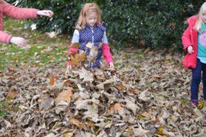 autumn leaf fun