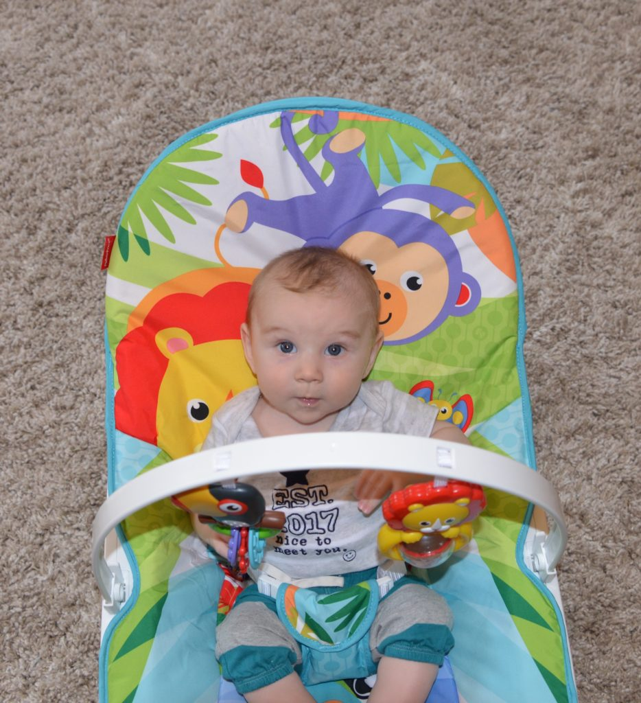 Fisher-Price® Infant to Toddler Rocker