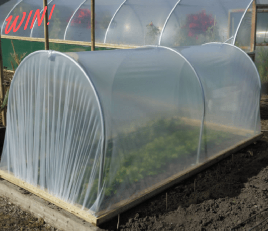 Win a Polytunnel with First Tunnels