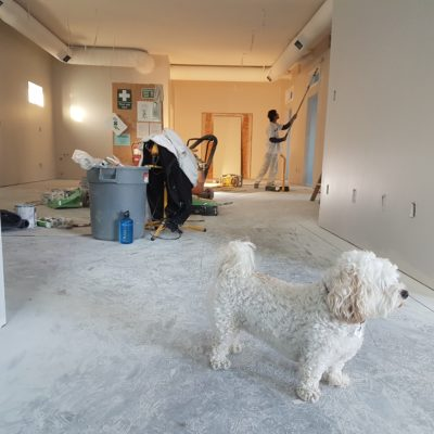 How To Get Through A Home Renovation Project