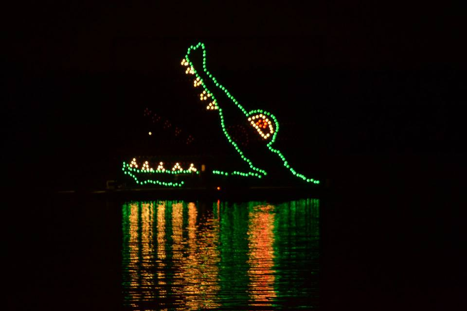 Disney's Electrical Water Parade