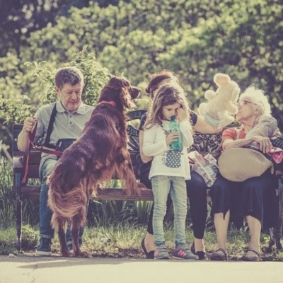 What Should Be Your First Family Pet?