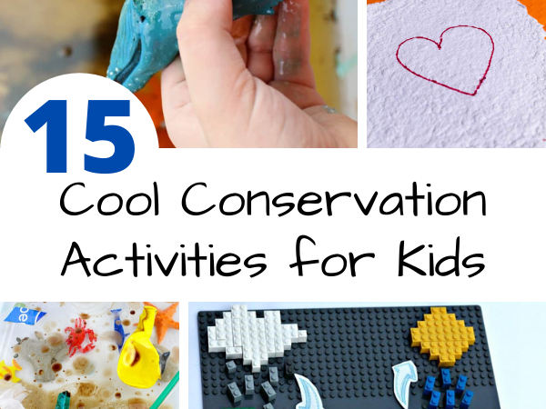 cool conservation activities