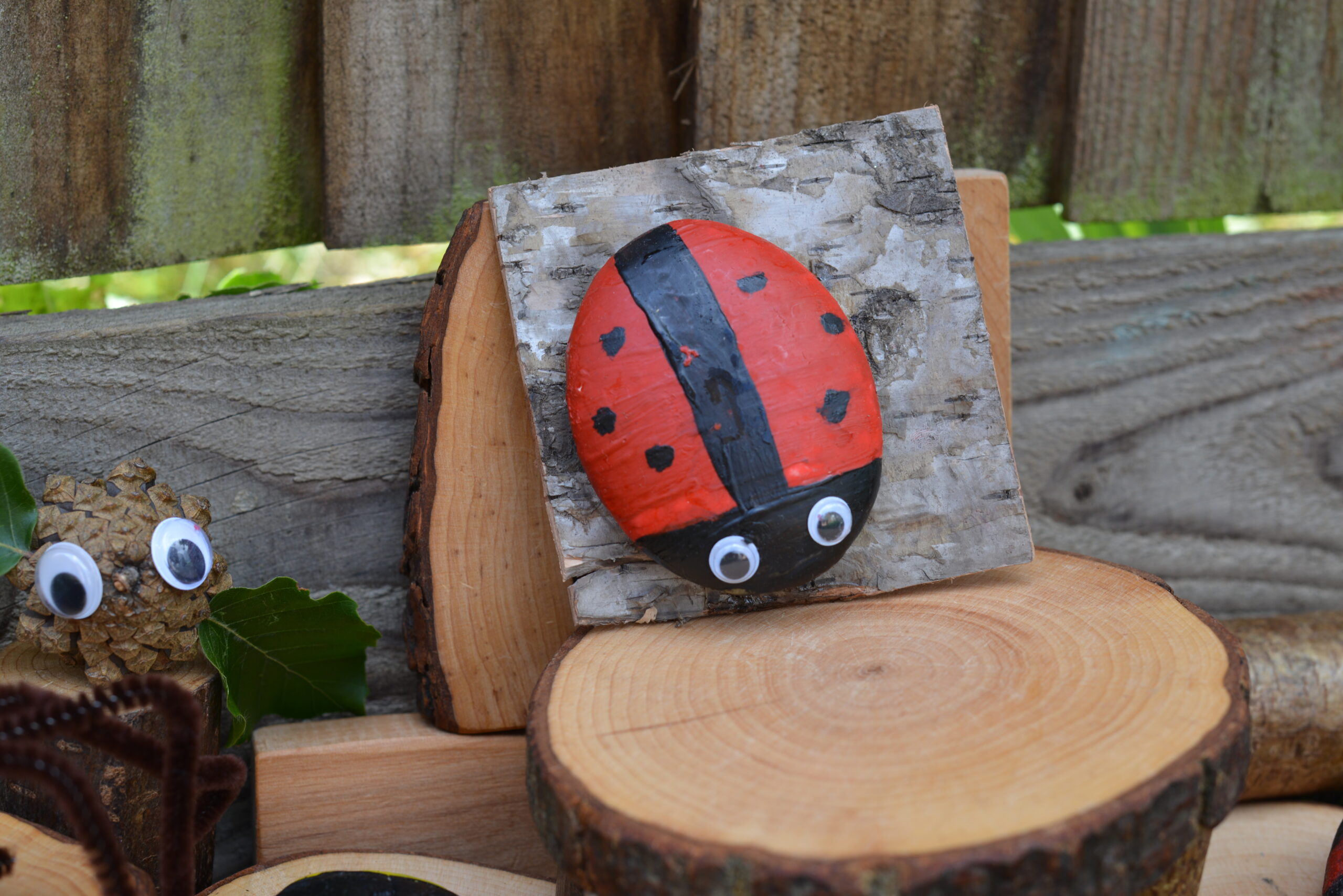 ladybird rock