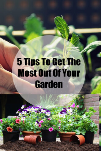 5 Tips To Get The Most Out Of Your Garden.